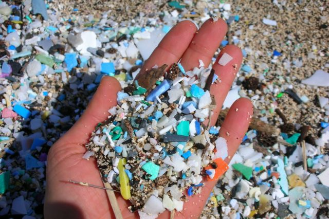Microplásticos: su impacto en la degradación del medio ambiente