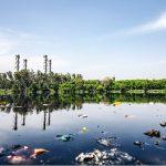 Valoración de riesgo para un uso adecuado de los desechos
